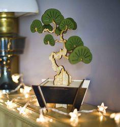 http://www.notonthehighstreet.com/packandtickle/product/flat-packed-bonsai-tree-kit