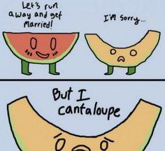 I'm sorry, but I cantaloupe
