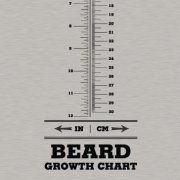 Great shirt... but I saw another one that measure beards in other terms (Dwarf Like)