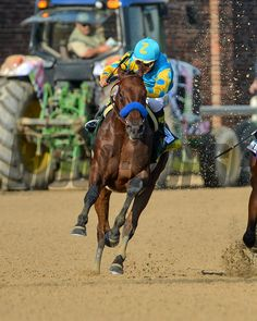 American Pharoah (outside) with Victor Espinoza aboard, turns for home running past Firing Line (middle) and Dortmund (inside), before in the 141th running of the Kentucky Derby.