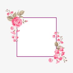 Rose borders, Plant, Flowers PNG Image and Clipart