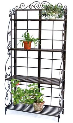 This Sturdy Metal Bakers Rack Plant Stand in Brushed Bronze Black has four shelves which create storage or display room for several potted plants and garden orn Plant Shelves, Display Shelves, Display Ideas, Outdoor Rooms, Indoor Outdoor, Outdoor Living, Outdoor Bakers Rack, Mattress Sets, Outdoor Planters