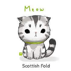 Study of a #scottishfoldkitten these cats are such a beauty! Like @waffles_the_cat is definitely out of this world! #cat #needmorecat #1weekchallenge #thousandskies #doodle by thousandskies