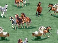 love Western Quilts, Studio Green, Kids Prints, Applique Quilts, Wild Horses, Fabric Swatches, Westerns, Needlework, Tossed