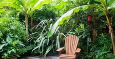 Don't Cut Those Grasses! The Mistake Even Pros Make | The Garden Glove