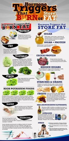Hormone Triggers that Burn And Store Fat food healthy weight loss health healthy food healthy living eating nutrition fat loss metabolism weight loss tips good to know hormones