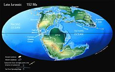 Pangea Begins to Rift Apart. The supercontinent of Pangea began to break apart in the Middle Jurassic. In the Late Jurassic the Central Atlantic Ocean was a narrow ocean separating Africa from eastern North America. Eastern Gondwana had begun to separate form Western Gondwana.