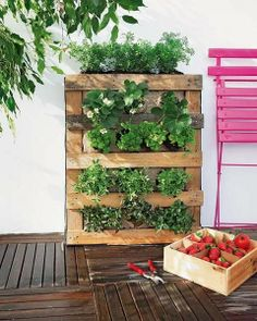 30 DIY Pallet Garden Projects to Update Your Gardens Diy Pallet Vertical Garden, Jardim Vertical Diy, Herb Garden Pallet, Vertical Garden Design, Backyard Garden Landscape, Small Backyard Gardens, Vertical Gardens, Indoor Garden, Garden Landscaping