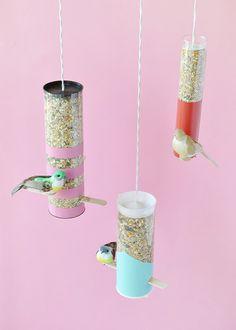Invite some colorful visitors to your backyard this spring with these DIY bird feeders!