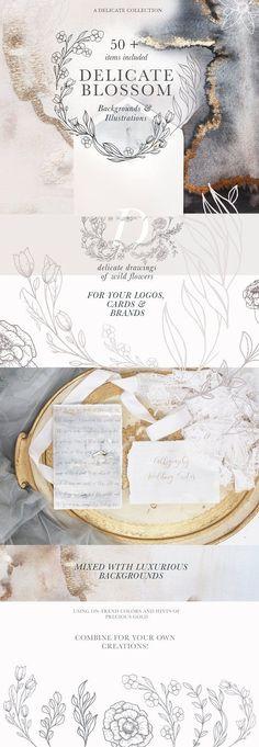 Modern Floral Illustrations &Texture by Laras Wonderland on @creativemarket
