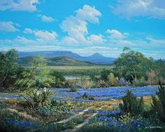Butter Field Trails ** Find out more about the great product at the image link. Landscape Paintings, Landscapes, Landscape Art, Oil Paintings, Thing 1, List Of Artists, Southwest Art, Blue Bonnets, Country Art