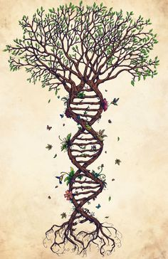 This would make a gorgeous tattoo!  The Fabric of Life by ~nauvasca on deviantART