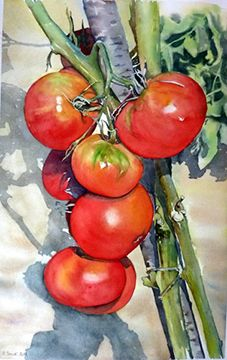 Watercolor tomatoes on the vine Watercolor Fruit, Watercolor Landscape, Watercolor And Ink, Watercolor Illustration, Watercolour Painting, Watercolor Flowers, Watercolors, Watercolour Tutorials, Watercolor Techniques