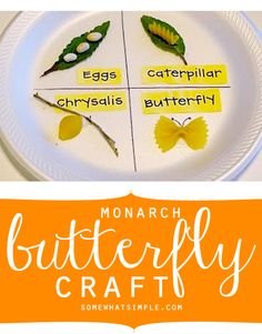 monarch butterfly craft and activity book