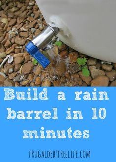 How to build a rain barrel in 10 minutes. This is perfect for the rainy summer days and hot season. Plus I see barrels on Craigslist all the time.