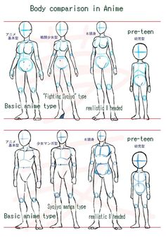 Manga Drawing Ideas Anime body style comparison by ~Yumezaka on deviantART - Body Reference Drawing, Drawing Body Poses, Art Reference Poses, Drawing Body Proportions, Anatomy Reference, Drawing Anime Bodies, Manga Drawing, Figure Drawing, Body Sketches