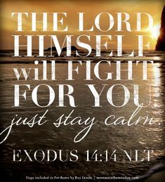 Life Quotes And Words To Live By : The Lord Will Fight for You  Fret Busters  by Roy Lessin