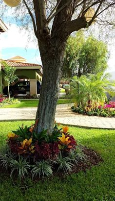 CASA AA-14: #jardines de estilo moderno por EcoEntorno Paisajismo Urbano #Paisajismojardinespatio