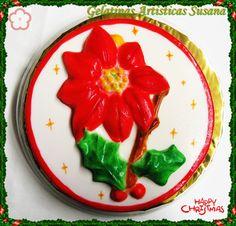 Flor de Nochebuena 2