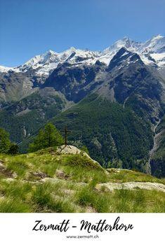 Zermatt – Matterhorn: Still looking for your perfect hike? We will help you with it! #Zermatt #Matterhorn Hiking Tours, Hiking Trails, Larch Tree, Fitness Trail, Alpine Flowers, Rare Species, Zermatt, Swiss Alps, Switzerland