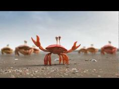 The Power of Union is Strength - Crabs VS Ants VS Penguins Advertisement - YouTube