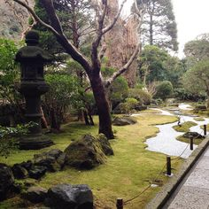 Beautiful gardens in Hokokuji Temple, Kamakura. #hokokujitemple #kamakura #japan #japanesegarden