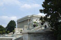 Washington D.C Capitol