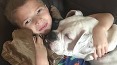 See the amazing bond between this nonverbal boy and deaf shelter dog