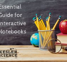Essential Guide for Interactive Notebooks