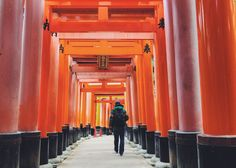 Looking for inspiration for your trip to Japan? Here's a guide in 50 photos with tips and and advice for planning a trip to Japan.