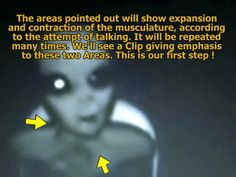 A GRAY ALIEN CAUGHT ON TAPE