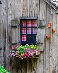 Herkese mutlu bir hafta diliyoruz. ����☘️☘️��door  #rose #landscape #flowers #kaktüs #design #sukkulent #topiary #tasarım #mimar #sun #shine #landscape #tree #taş#gross #garden #bahçe #grass  #botanical #green #rose #forest #geofit #ikebana #ornamental #cim #ağaç #çiçek #flowers #peyzaj #peyzajmimari #mimar #pink #rose #green http://turkrazzi.com/ipost/1515066994952300717/?code=BUGmWedDOit