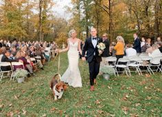 Tennessee Backyard Wedding from Leslee Mitchell Dog Wedding, Wedding Looks, Perfect Wedding, Four Legged, Tennessee, Wedding Photos, Wedding Ideas, Style Me, Dolores Park