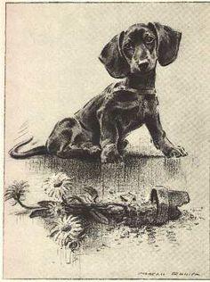 "Dachshund Dog Art Print M Dennis ""N"" | eBay"