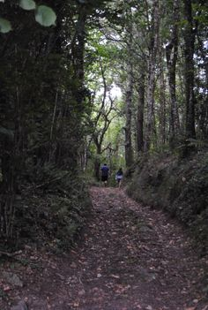Paseando por Yerbo, Asturias