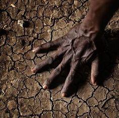 Human climate change '95% certain'