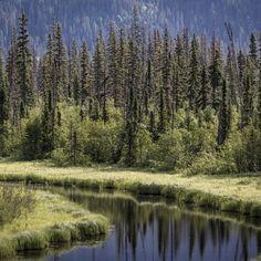 Natural Canada