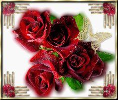 Boucket de rose rouge