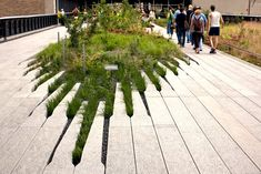 Really interesting installation allowing a natural mound to grow into a linear formation.