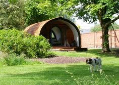 Garden Pods, Shoe Holders, Shepherds Hut, Summer Garden, Beautiful Space, Hobbies, Garden Ideas, Design, Suit