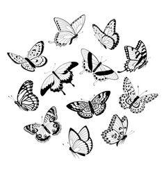Flying black white butterflies vector 896191 - by fireflamenco on VectorStock®