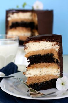 This cake has layers of devil's food cake, angel food cake, peanut butter filling and chocolate ganache.