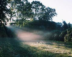 Light / photo by Whitney Hayes http://www.namkhoa.net/it-tinh-trung.html