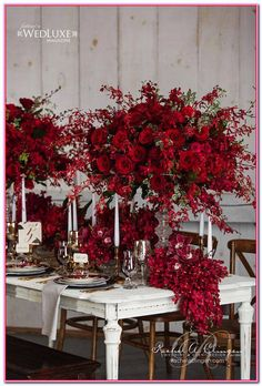 ideas for wedding table red roses floral arrangements Red Wedding Flowers, Fall Flowers, Red Flowers, Floral Wedding, Red Roses, Red Orchids, Red Bouquet Wedding, White Roses, Wedding Table