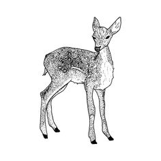 Doe by Tea Leigh from Tattly Temporary Tattoos. Fake tattoos by real artists! Elephant Tattoos, Japanese Tattoo Women, Japanese Tattoo Symbols, Japanese Patterns, Japanese Symbols Tattoo, Japanese Tattoos For Men, Japanese Tattoo Art, Art, Japanese Tattoo