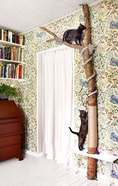Cool cat houses for cool cats - DIY cat house furnishings - ca . - cats - Cool cat houses for cool cats DIY cat house furnishings approx - Cool Cat Toys, Diy Cat Toys, Cats Diy, Cool Cats, Homemade Cat Toys, Diys For Cats, Diy Jouet Pour Chat, Diy Pet, New Swedish Design