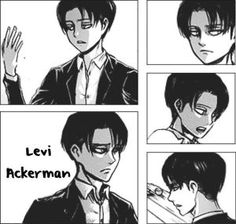 Forced To Marry ||Levi X Reader|| AU [1] by WolvesPrideStudios on DeviantArt