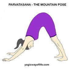 yoga poses  asana list with images  yoga poses