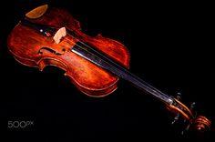 Classical shape wood vintage violin - Classical shape wood vintage violin Music instrument isolated on Black background