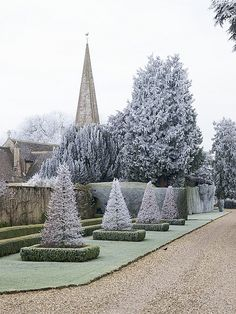 Hoarfrost, Down Ampney House, Gloucestershire by Nigel Musgrove-one million views-thank you! on Flickr.